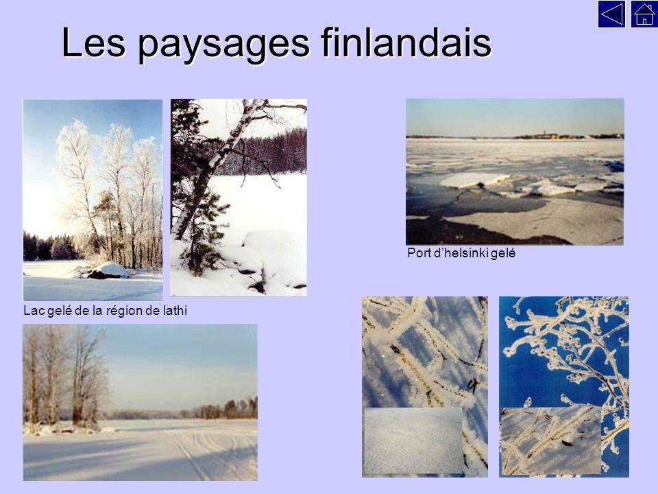 Les paysages finlandais Lac gelé de la région de lathi Port dhelsinki gelé