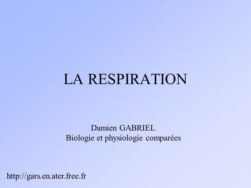 LA RESPIRATION Damien GABRIEL Biologie et physiologie comparées http://gars.en.ater.free.fr