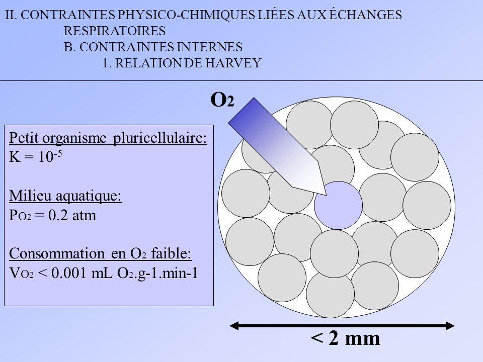 II. CONTRAINTES PHYSICO-CHIMIQUES LIÉES AUX ÉCHANGES RESPIRATOIRES B. CONTRAINTES INTERNES 1. RELATION DE HARVEY Petit organisme pluricellulaire: K =