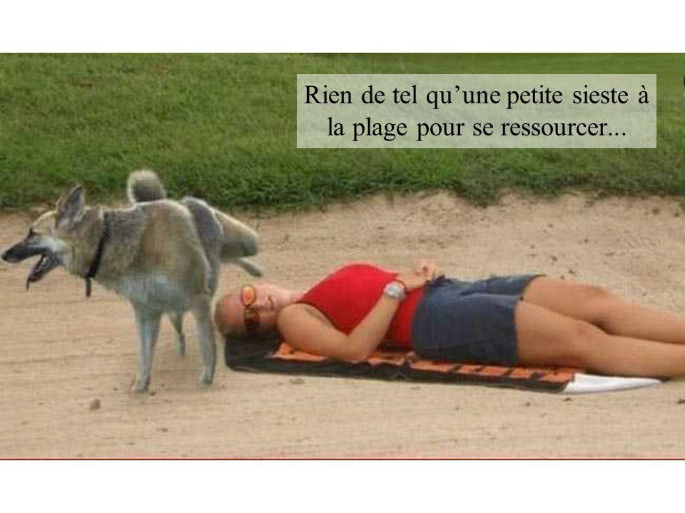Rien de tel quune petite sieste à la plage pour se ressourcer...