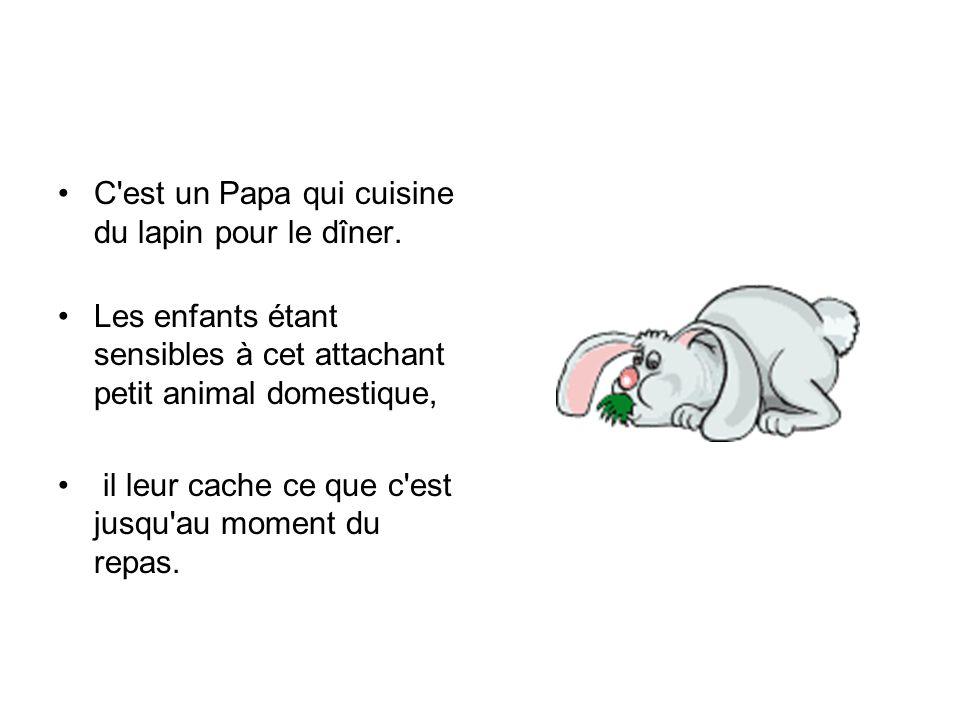C'est un Papa qui cuisine du lapin pour le dîner. Les enfants étant sensibles à cet attachant petit animal domestique, il leur cache ce que c'est jusq