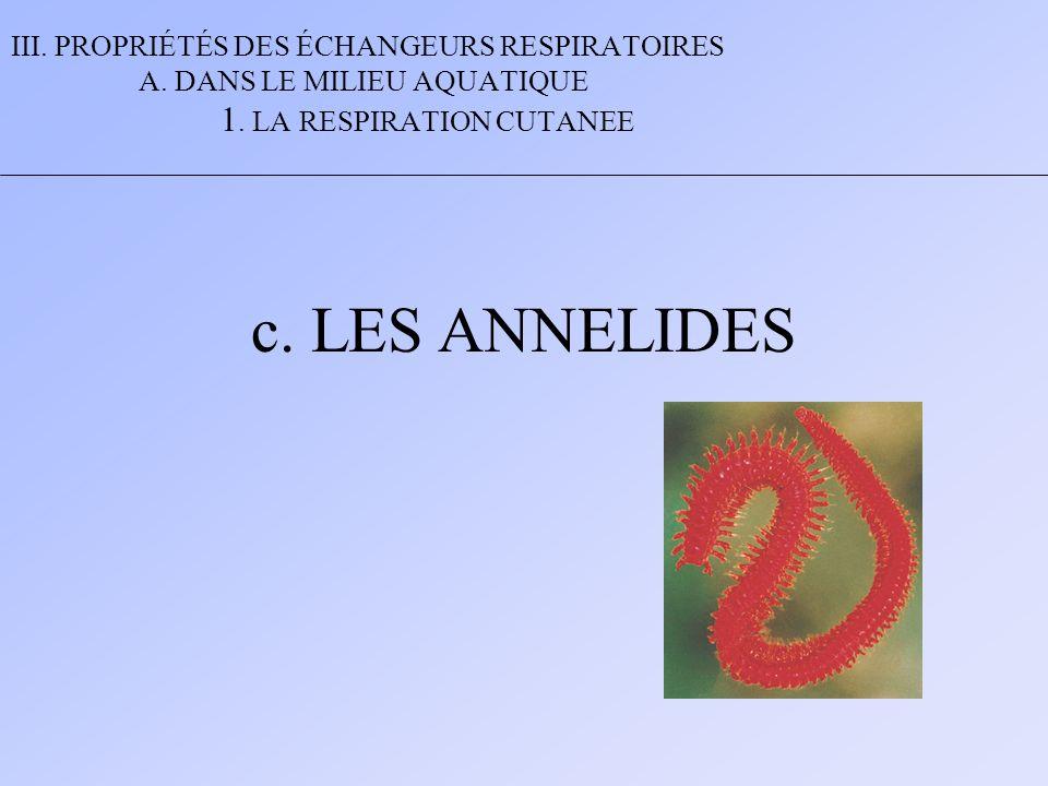 III. PROPRIÉTÉS DES ÉCHANGEURS RESPIRATOIRES A. DANS LE MILIEU AQUATIQUE 1. LA RESPIRATION CUTANEE c. LES ANNELIDES