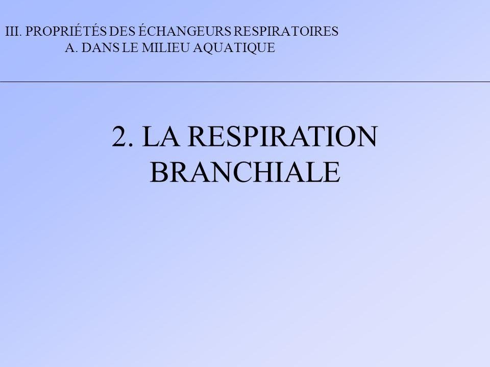 2. LA RESPIRATION BRANCHIALE III. PROPRIÉTÉS DES ÉCHANGEURS RESPIRATOIRES A. DANS LE MILIEU AQUATIQUE