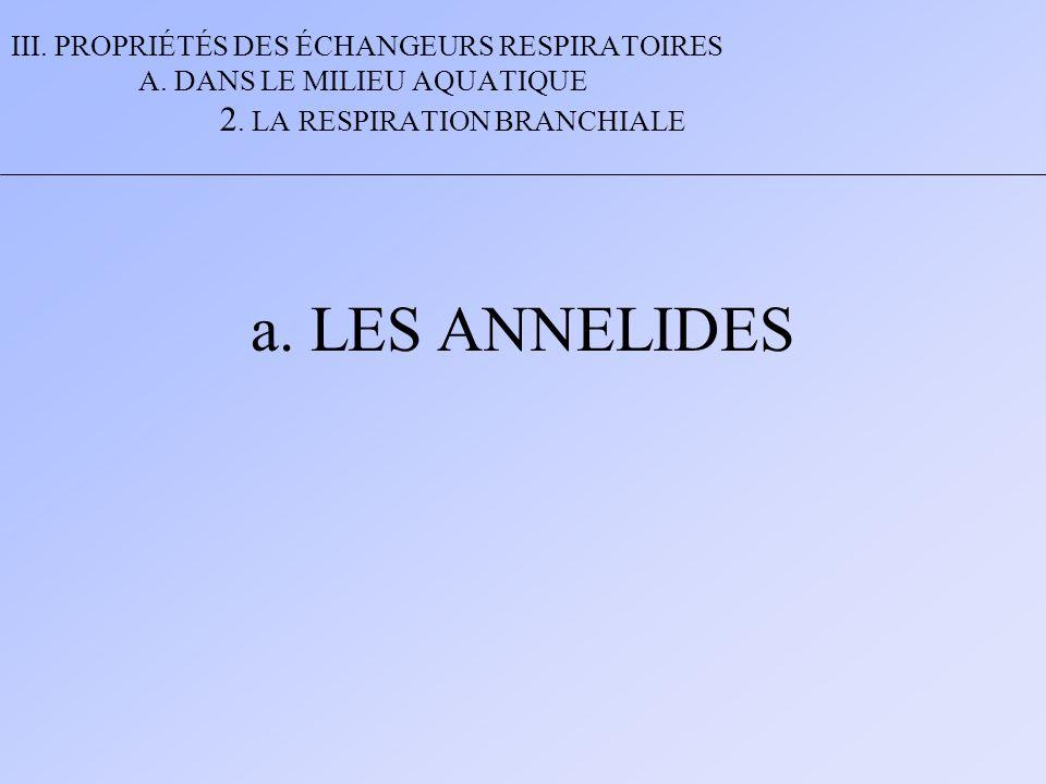 III. PROPRIÉTÉS DES ÉCHANGEURS RESPIRATOIRES A. DANS LE MILIEU AQUATIQUE 2. LA RESPIRATION BRANCHIALE a. LES ANNELIDES