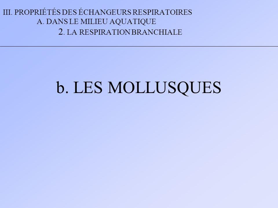 III. PROPRIÉTÉS DES ÉCHANGEURS RESPIRATOIRES A. DANS LE MILIEU AQUATIQUE 2. LA RESPIRATION BRANCHIALE b. LES MOLLUSQUES