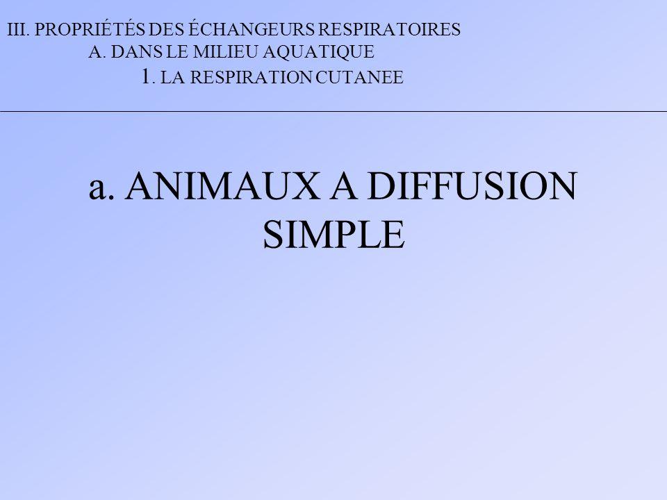 III. PROPRIÉTÉS DES ÉCHANGEURS RESPIRATOIRES A. DANS LE MILIEU AQUATIQUE 1. LA RESPIRATION CUTANEE a. ANIMAUX A DIFFUSION SIMPLE