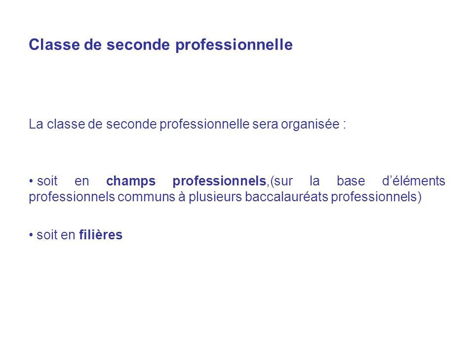 Classe de seconde professionnelle La classe de seconde professionnelle sera organisée : soit en champs professionnels,(sur la base déléments professionnels communs à plusieurs baccalauréats professionnels) soit en filières