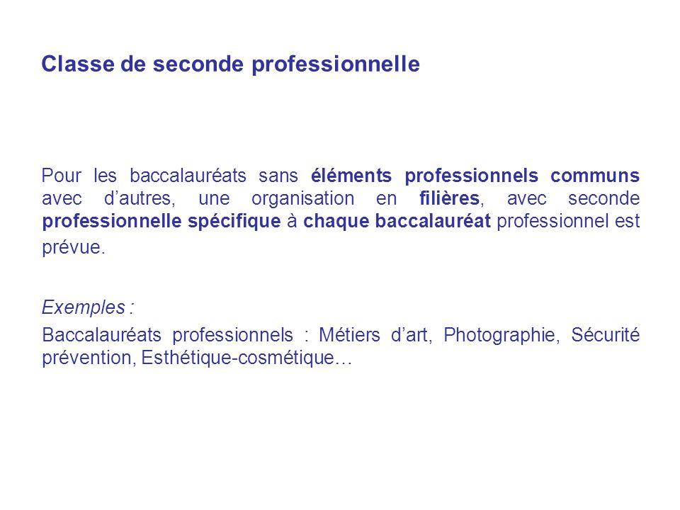 Classe de seconde professionnelle Pour les baccalauréats sans éléments professionnels communs avec dautres, une organisation en filières, avec seconde professionnelle spécifique à chaque baccalauréat professionnel est prévue.