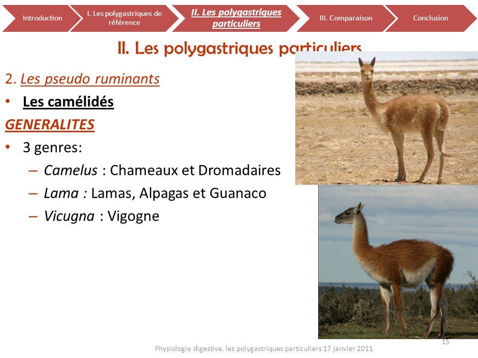 2. Les pseudo ruminants Les camélidés GENERALITES 3 genres: – Camelus : Chameaux et Dromadaires – Lama : Lamas, Alpagas et Guanaco – Vicugna : Vigogne