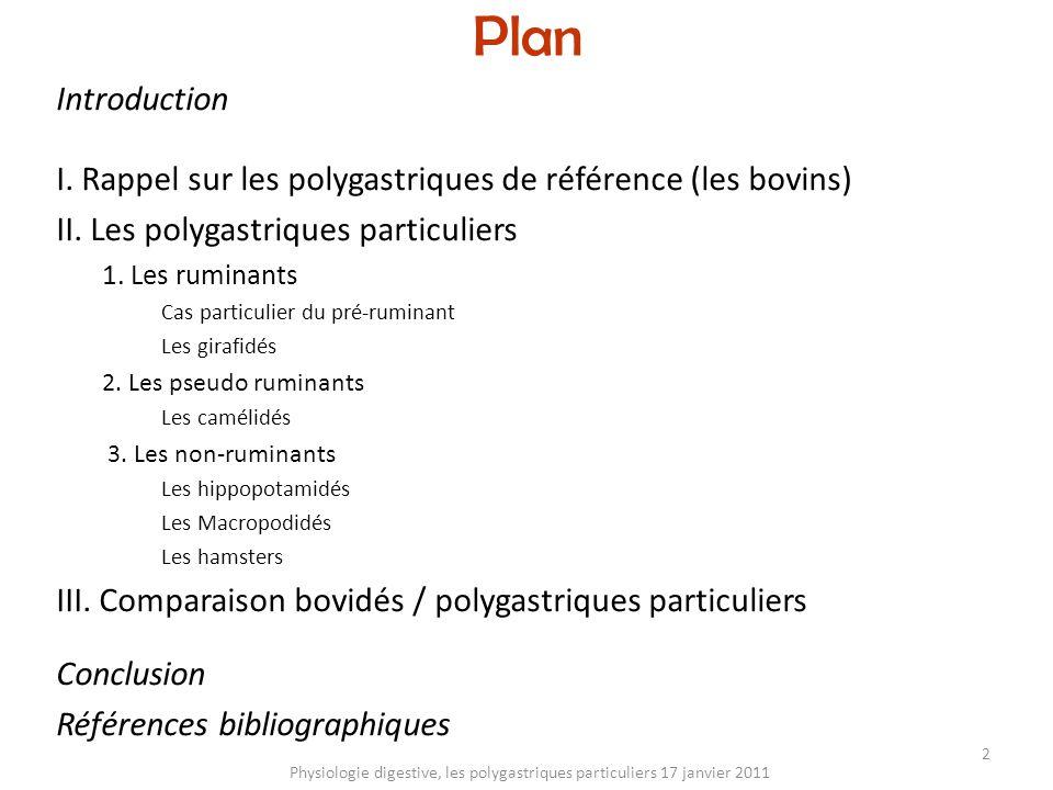 Plan Introduction I. Rappel sur les polygastriques de référence (les bovins) II. Les polygastriques particuliers 1. Les ruminants Cas particulier du p