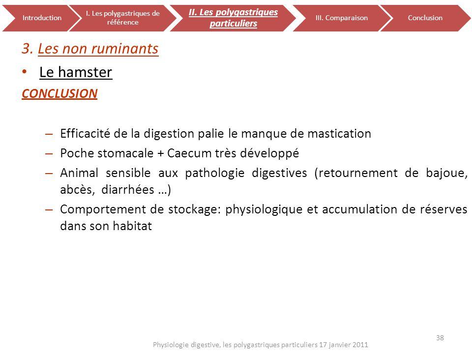 3. Les non ruminants Le hamster CONCLUSION – Efficacité de la digestion palie le manque de mastication – Poche stomacale + Caecum très développé – Ani