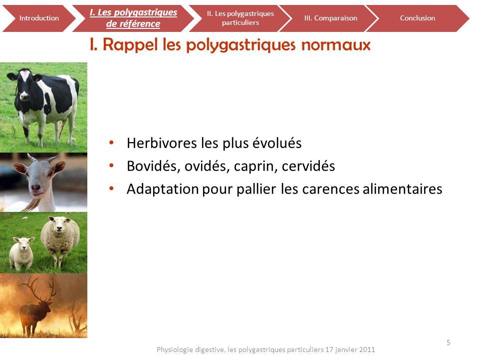 Herbivores les plus évolués Bovidés, ovidés, caprin, cervidés Adaptation pour pallier les carences alimentaires I. Rappel les polygastriques normaux 5