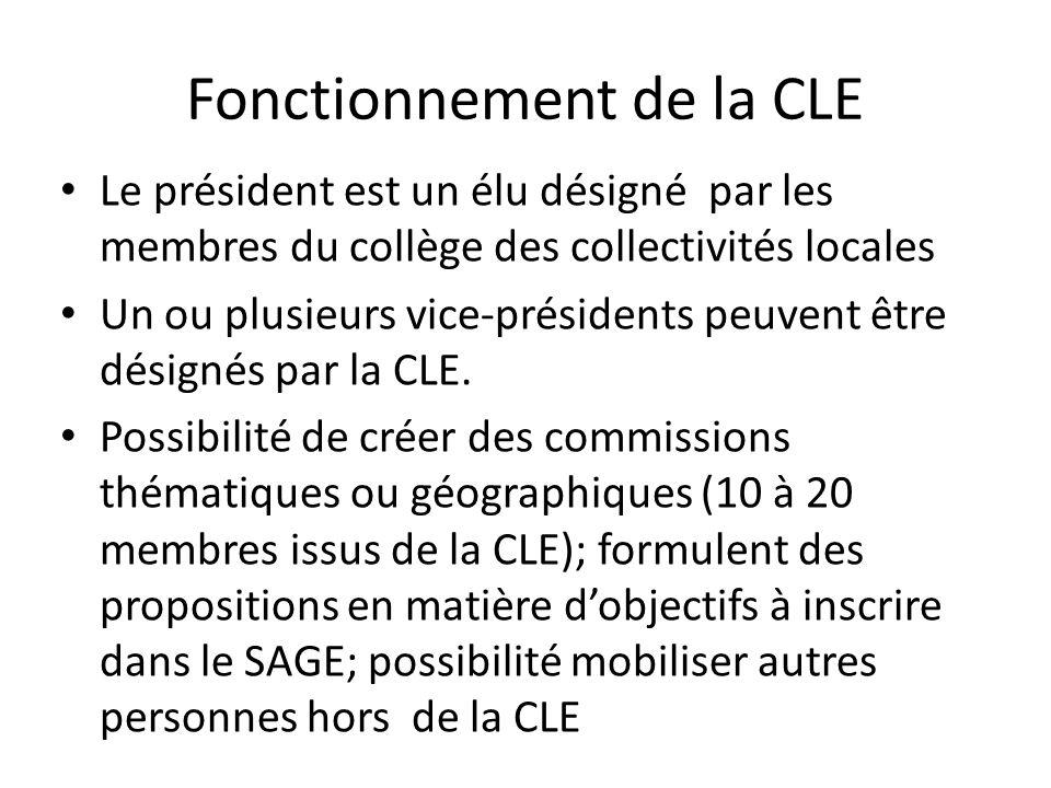 Fonctionnement de la CLE Le président est un élu désigné par les membres du collège des collectivités locales Un ou plusieurs vice-présidents peuvent