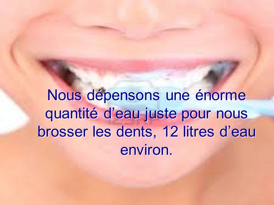 Nous dépensons une énorme quantité deau juste pour nous brosser les dents, 12 litres deau environ.