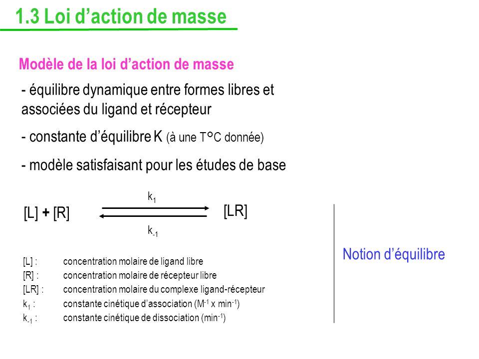 1.3 Loi daction de masse Modèle de la loi daction de masse - équilibre dynamique entre formes libres et associées du ligand et récepteur [L] + [R] [LR