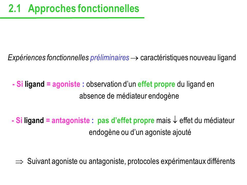 2.1 Approches fonctionnelles Expériences fonctionnelles préliminaires caractéristiques nouveau ligand - Si ligand = agoniste : observation dun effet p