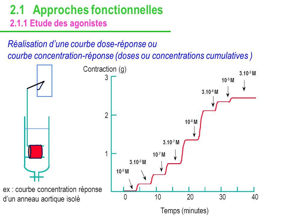 Réalisation dune courbe dose-réponse ou courbe concentration-réponse (doses ou concentrations cumulatives ) 0 102030 40 3 Contraction (g) Temps (minut