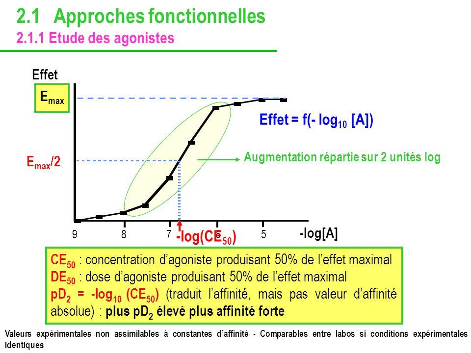 2.1 Approches fonctionnelles 2.1.1 Etude des agonistes Valeurs expérimentales non assimilables à constantes daffinité - Comparables entre labos si con