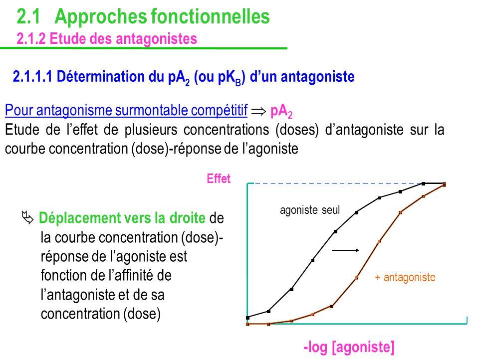 2.1.1.1 Détermination du pA 2 (ou pK B ) dun antagoniste Pour antagonisme surmontable compétitif pA 2 Etude de leffet de plusieurs concentrations (dos