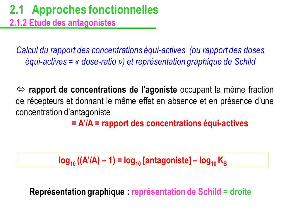 rapport de concentrations de lagoniste occupant la même fraction de récepteurs et donnant le même effet en absence et en présence dune concentration d