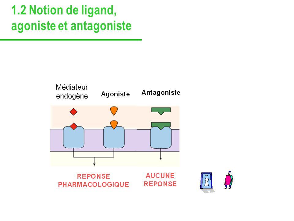 1.2 Notion de ligand, agoniste et antagoniste Médicament agoniste : mime leffet du médiateur entier (réponse cellulaire maximale) partiel Médicament antagoniste neutre : - soppose à la liaison du médiateur à son récepteur - ninduit pas de réponse par lui-même mais leffet du médiateur endogène Médicament agoniste inverse : - soppose à la liaison du médiateur à son récepteur - entraîne une réponse opposée à celle de lagoniste