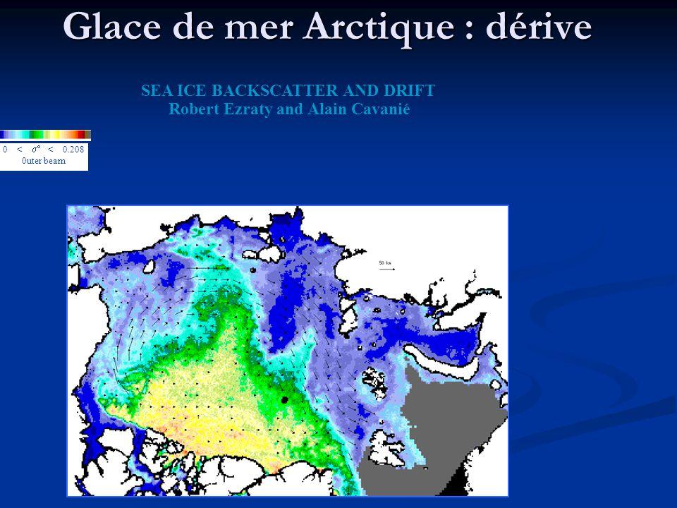 Glace de mer Arctique : dérive 0 < < 0.208 0uter beam SEA ICE BACKSCATTER AND DRIFT Robert Ezraty and Alain Cavanié