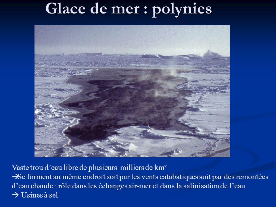 Glace de mer : polynies Vaste trou deau libre de plusieurs milliers de km² Se forment au même endroit soit par les vents catabatiques soit par des remontées deau chaude : rôle dans les échanges air-mer et dans la salinisation de leau Usines à sel