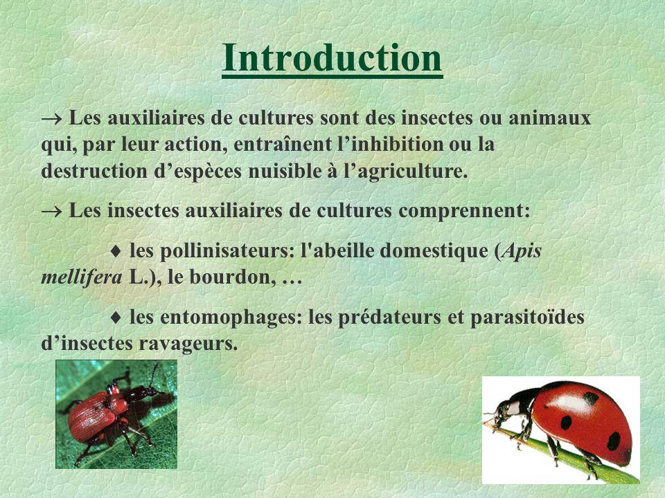 Introduction Les auxiliaires de cultures sont des insectes ou animaux qui, par leur action, entraînent linhibition ou la destruction despèces nuisible
