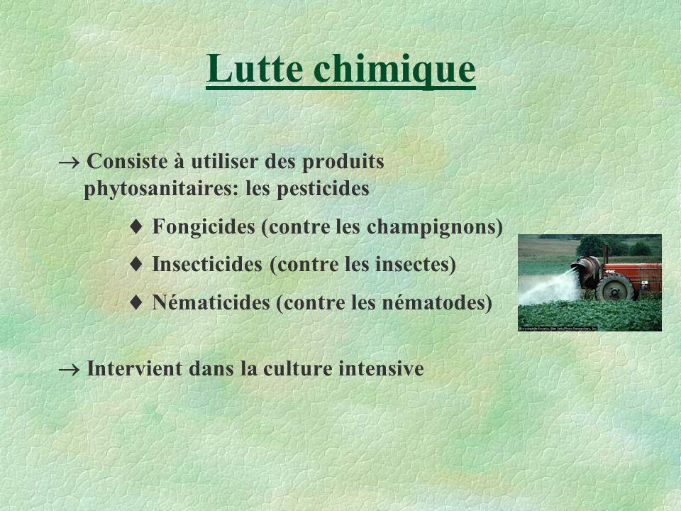 Lutte chimique Consiste à utiliser des produits phytosanitaires: les pesticides Fongicides (contre les champignons) Insecticides (contre les insectes)