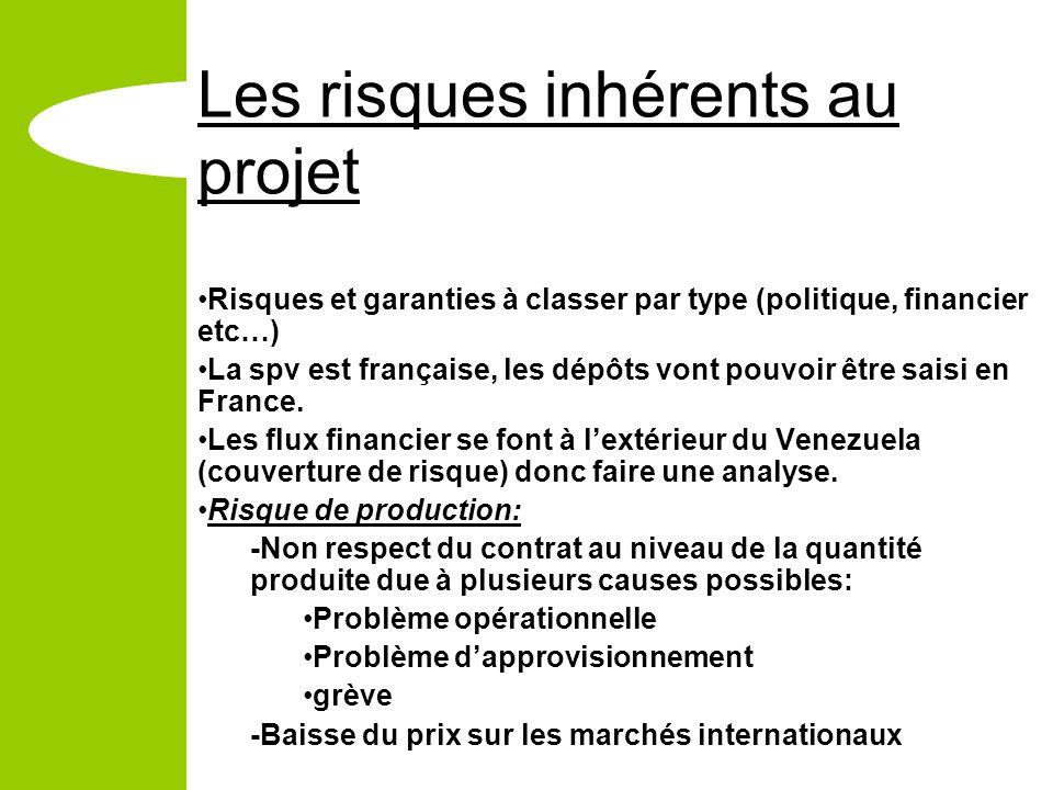 Les risques inhérents au projet Risques et garanties à classer par type (politique, financier etc…) La spv est française, les dépôts vont pouvoir être saisi en France.