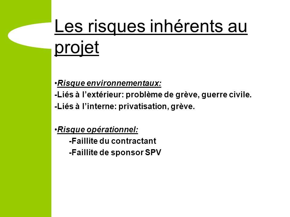 Les risques inhérents au projet Risque environnementaux: -Liés à lextérieur: problème de grève, guerre civile.