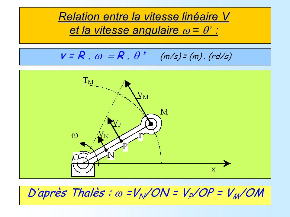 Relation entre la vitesse linéaire V et la vitesse angulaire = : v = R. R. (m/s) = (m). (rd/s) Daprès Thalès : =V N /ON = V P /OP = V M /OM