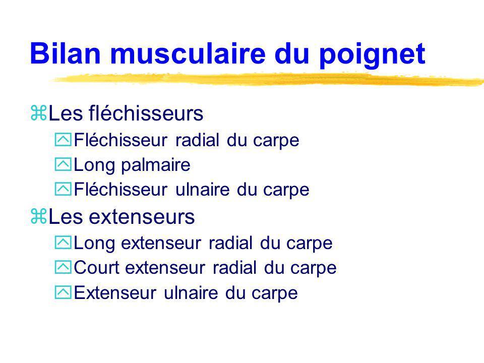 Bilan musculaire du poignet zLes fléchisseurs yFléchisseur radial du carpe yLong palmaire yFléchisseur ulnaire du carpe zLes extenseurs yLong extenseu