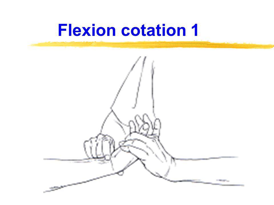 Flexion cotation 1