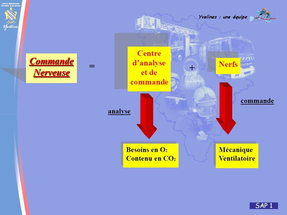 Service départemental d incendie et de secours Yvelines : une équipe SAP 1 CommandeNerveuse Centre danalyse et de commande Nerfs Besoins en O 2 Contenu en CO 2 Besoins en O 2 Contenu en CO 2 Mécanique Ventilatoire Mécanique Ventilatoire = + analyse commande