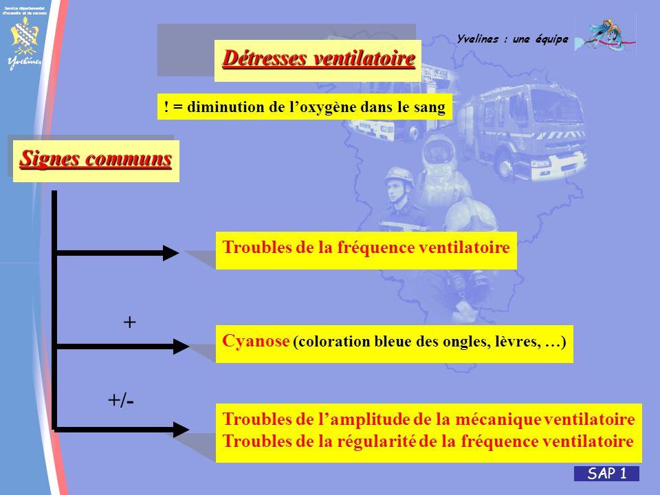 Service départemental d'incendie et de secours Yvelines : une équipe SAP 1 Détresses ventilatoire ! = diminution de loxygène dans le sang Signes commu