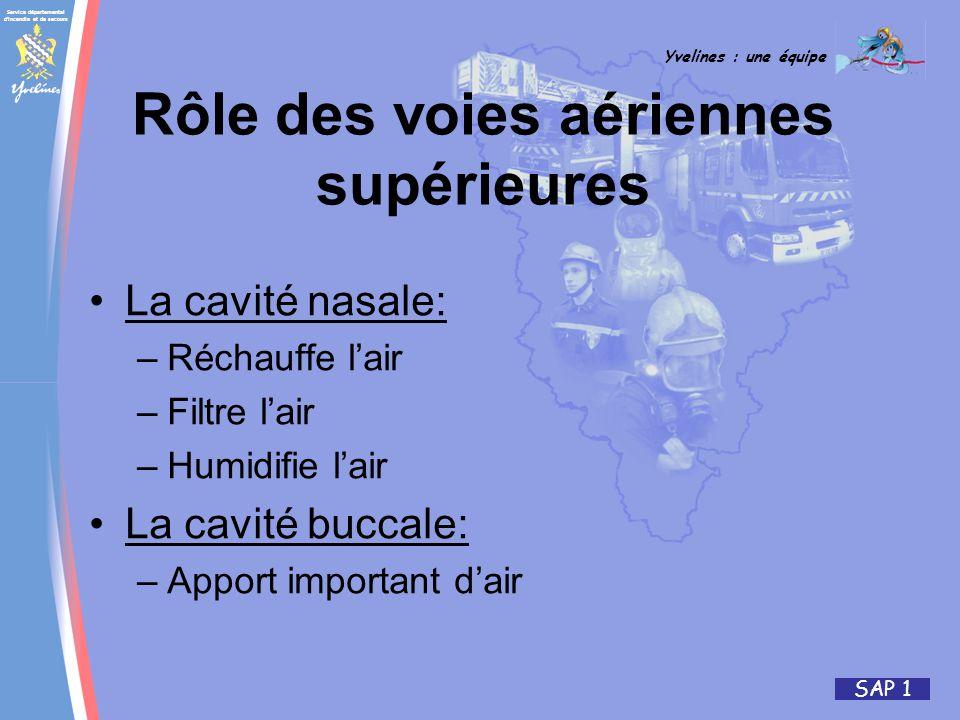 Service départemental d incendie et de secours Yvelines : une équipe SAP 1 La cavité nasale: –Réchauffe lair –Filtre lair –Humidifie lair La cavité buccale: –Apport important dair Rôle des voies aériennes supérieures