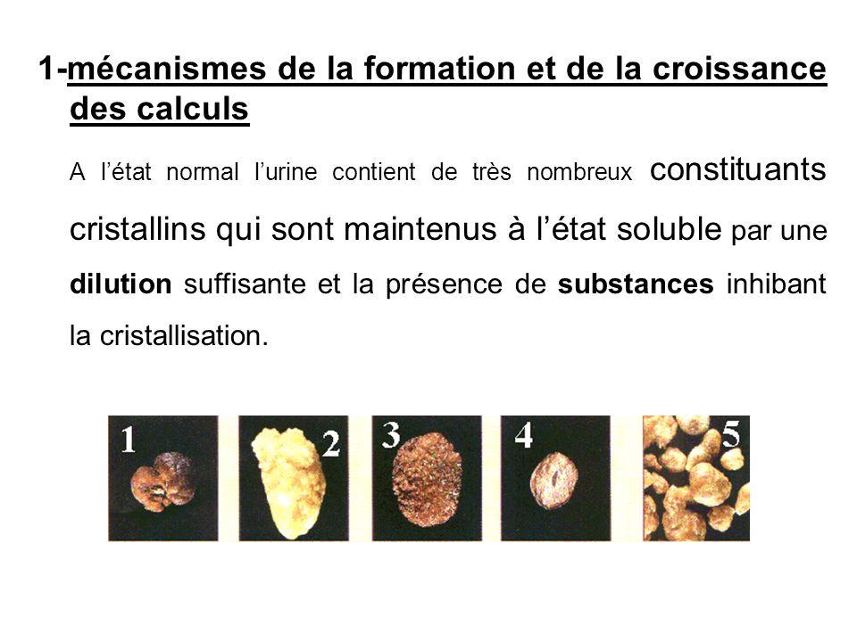 1-mécanismes de la formation et de la croissance des calculs A létat normal lurine contient de très nombreux constituants cristallins qui sont mainten