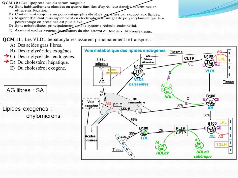 Classification classique internationale de Fredrickson Type I : élévation des chylomicrons Type II IIa : élévation des LDL IIb : élévation des LDL et VLDL Type III : élévation des IDL Type IV : élévation isolée des VLDL Type V : élévation des chylomicrons, des VLDL et des LDL Aspect du sérum après décantation Transparent, clair (pas de chylomicron et VLDL taux faible) Opalescent (VLDL?) Lactescent (Chylo?)