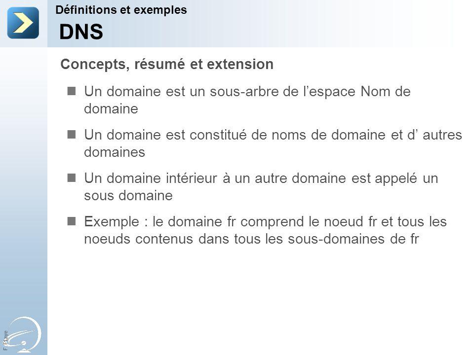 F. Playe Un domaine est un sous-arbre de lespace Nom de domaine Un domaine est constitué de noms de domaine et d autres domaines Un domaine intérieur