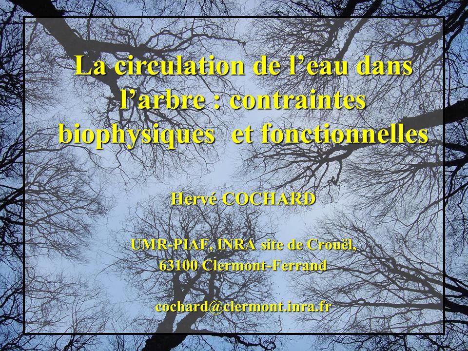Hervé COCHARD UMR-PIAF, INRA site de Crouël, 63100 Clermont-Ferrand cochard@clermont.inra.fr La circulation de leau dans larbre : contraintes biophysiques et fonctionnelles