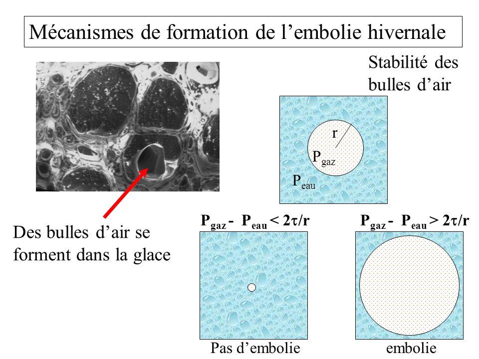 Mécanismes de formation de lembolie hivernale r P eau P gaz P gaz - P eau < 2 /rP gaz - P eau > 2 /r Stabilité des bulles dair Pas dembolieembolie Des bulles dair se forment dans la glace