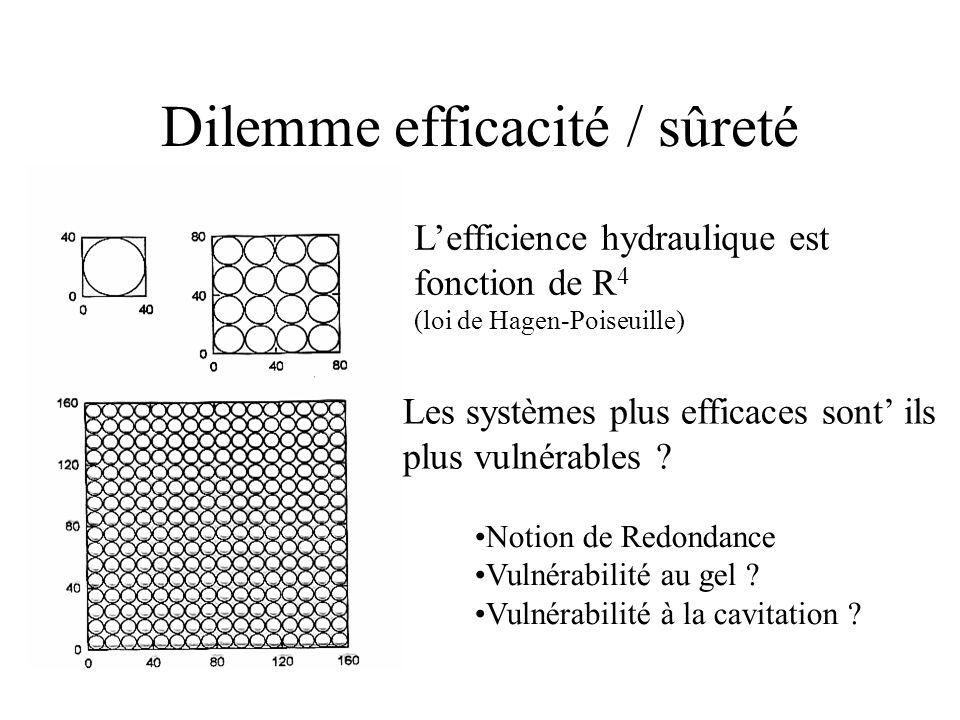 Dilemme efficacité / sûreté Lefficience hydraulique est fonction de R 4 (loi de Hagen-Poiseuille) Les systèmes plus efficaces sont ils plus vulnérables .