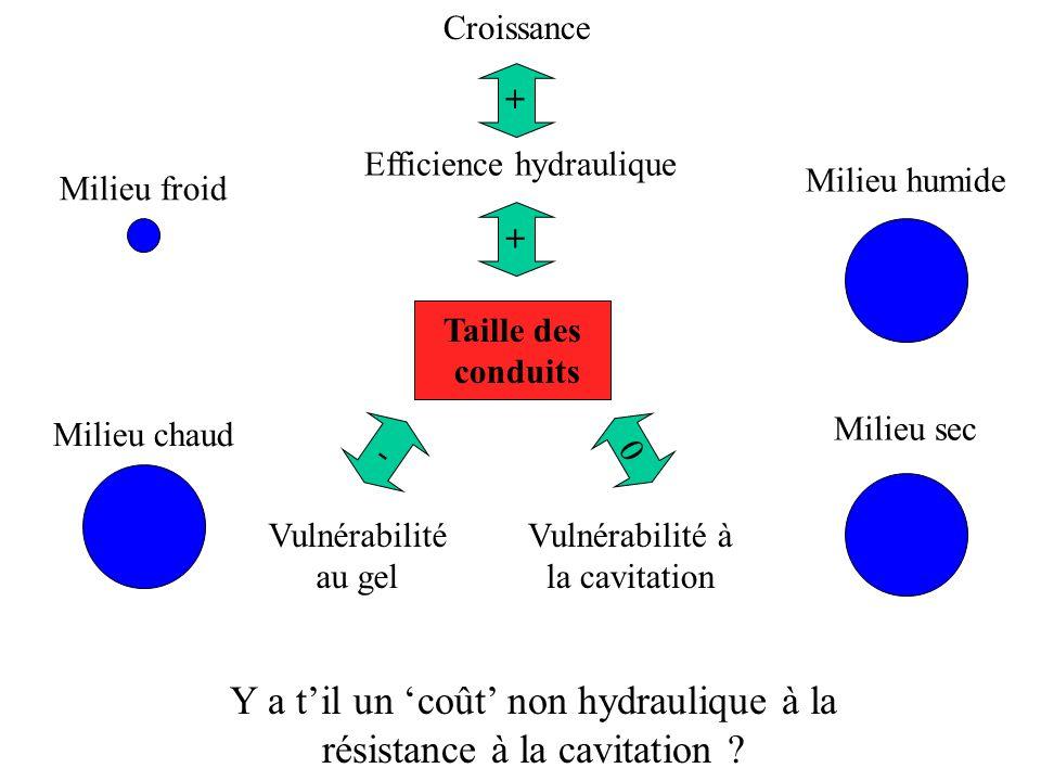 0 Vulnérabilité au gel - Taille des conduits Milieu froid Milieu chaud Milieu humide Milieu sec Y a til un coût non hydraulique à la résistance à la cavitation .