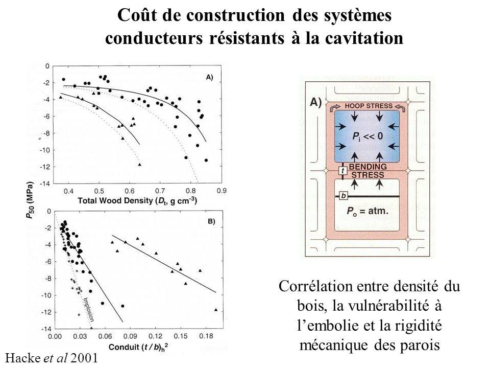 Hacke et al 2001 Coût de construction des systèmes conducteurs résistants à la cavitation Corrélation entre densité du bois, la vulnérabilité à lembolie et la rigidité mécanique des parois