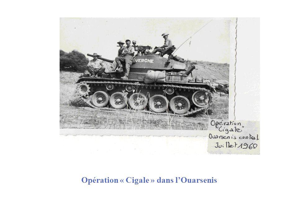 Opération « Cigale » dans lOuarsenis