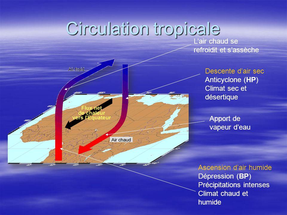 Localisation géographique des cellules de convection Sur les animations satellitales du canal vapeur deau, les zones blanches localisent les zones de forte convection alors que les zones sombres localisent les régions de forte subsidence; Sur les animations satellitales du canal vapeur deau, les zones blanches localisent les zones de forte convection alors que les zones sombres localisent les régions de forte subsidence; Les branches ascendantes se situent au nord de lEquateur géographique; Les branches ascendantes se situent au nord de lEquateur géographique; Les branches descendantes 35°N et 25°S (zones sombres) Les branches descendantes 35°N et 25°S (zones sombres) Animation Météosat 7 canal vapeur deau (juillet 1998)