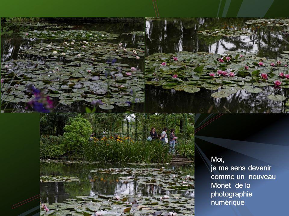 Maintenant vous comprenez Monet et son amour des nymphéas