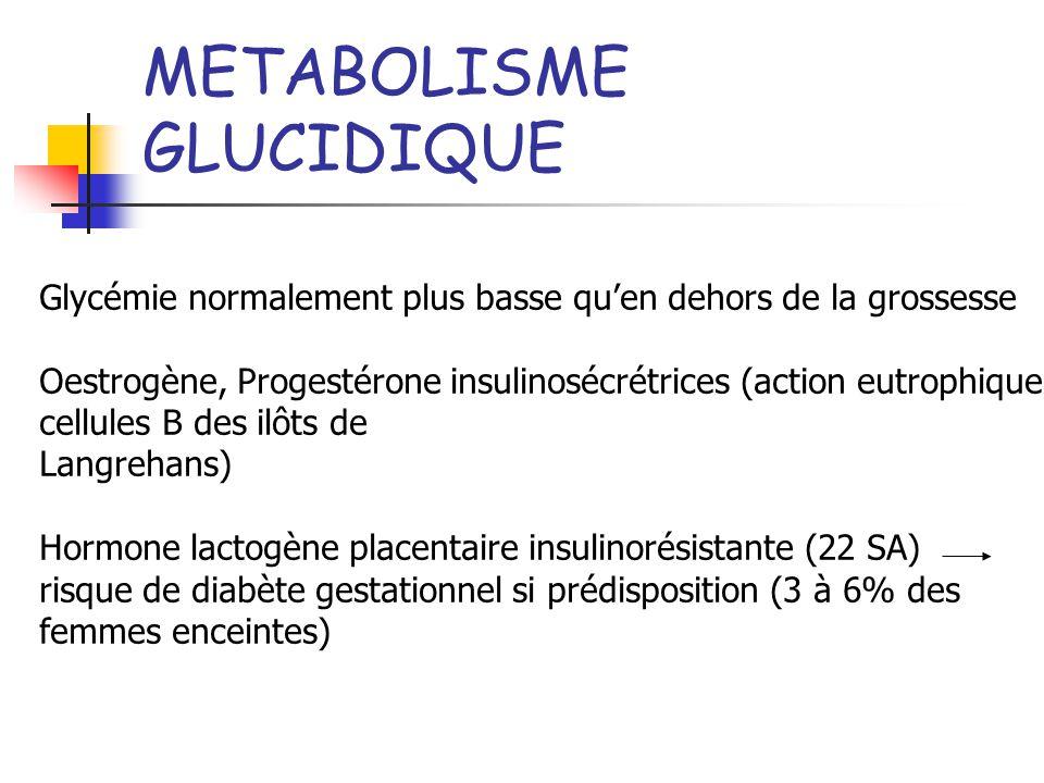 METABOLISME GLUCIDIQUE Glycémie normalement plus basse quen dehors de la grossesse Oestrogène, Progestérone insulinosécrétrices (action eutrophique ce