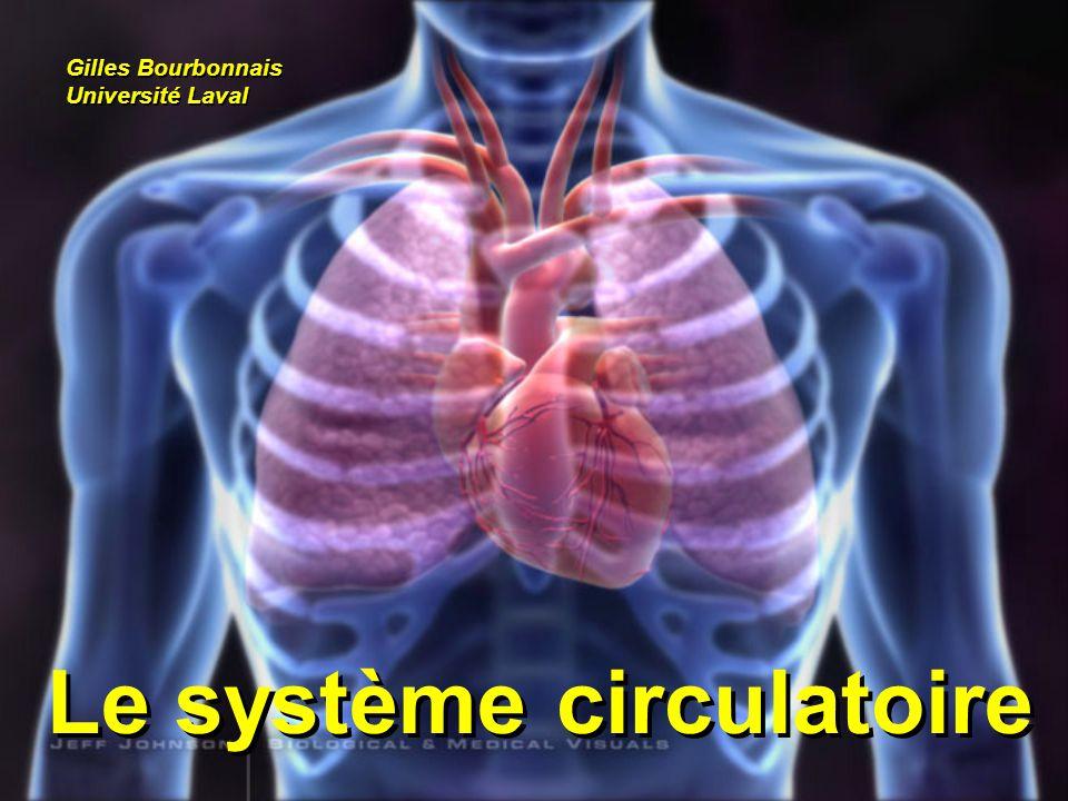 Le système circulatoire Gilles Bourbonnais Université Laval